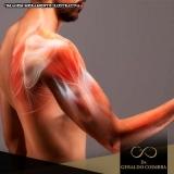 local para tratamento de dor na articulação do ombro Ibirapuera