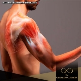 local para tratamento para dor na articulação do ombro Vila Nova Conceição