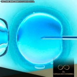 tratamento da infertilidade feminina Vila Madalena