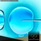 tratamento de infertilidade fertilização in vitro Alto de Pinheiros