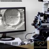 tratamentos de infertilidade fertilização in vitro Jardins