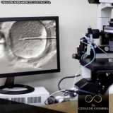 tratamentos de infertilidade fertilização in vitro Ibirapuera