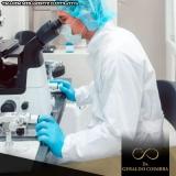 tratamento de infertilidade fertilização in vitro